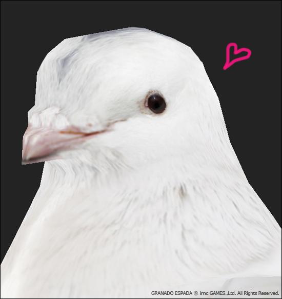 마술에서 빠져서는 안되는 비둘기 모델링